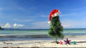 Christmas Tree on Beach